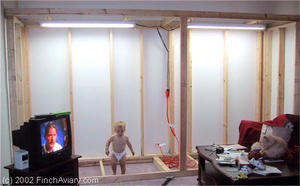 Finch Aviary Construction Installing The Aviary Lighting